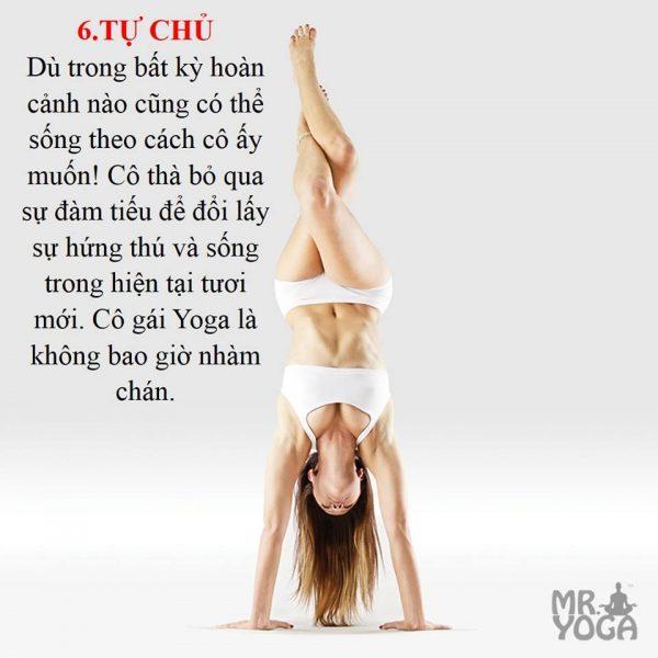 yogi-6
