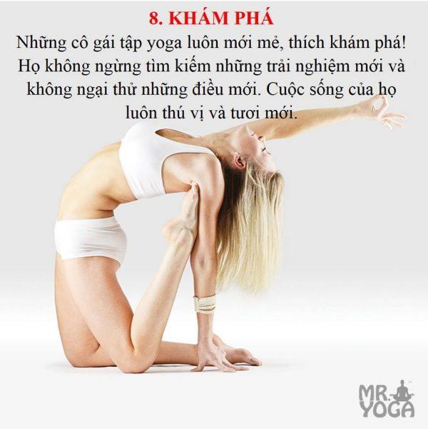 yogi-8